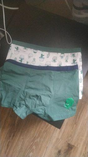 Kids Boys Underwear Cartoon 2Pcs Children's Shorts Panties For Baby Boy Boxers Cotton Briefs Soft Shorts Teenager Underpants photo review