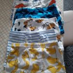 6-Pack Shorts Boys Underwear Kids Boxer panties for 2-10 years Soft Organic Cotton Teenager Children's Pants baby Underpant photo review