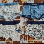 4pcs/pack Boys Boxers Underwear Cute Dinosaur Print Shorts Teenage Panties Toddler Baby Clothes Cotton Panties Kids Underpants photo review