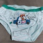 5 Pcs/Lot Boys Underwear Soft Cotton Briefs Child Dinosaur Cartoon Children Panties Breathable Kids Briefs Boys Underpants 2-14Y photo review