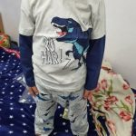 Children Boys Girls Clothing Toddler Kids Long Sleeves T-shirts For Girls Boys Tops Tees Baby Dinosaur T Shirt Casual Clothes photo review