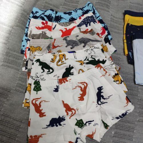 5 Pcs Children Underpants Boys Panties Cotton Cartoon Dinosaur Briefs For Boy Shorts Baby Panties Kids Underwear 2-9T photo review