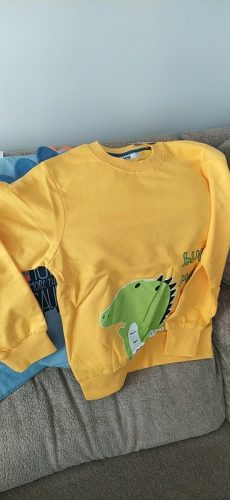 brand Spring Children's Clothing Printed Cartoon Animal Clothes 2-8y Baby Boys Dinosaur Sweatshirt Long Sleeved Clothes Tops photo review