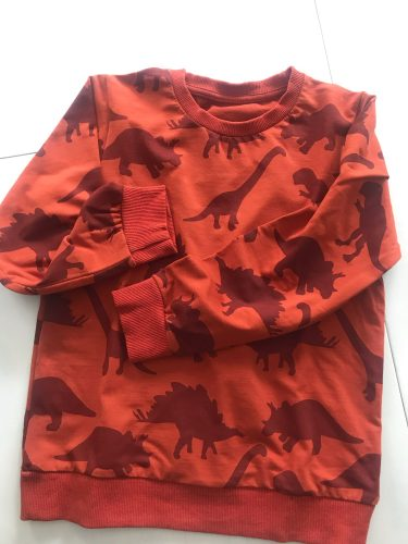 Boys Girls Cotton Clothing Dinosaurs Printed Baby Sweaters for Autumn Spring Kids Animals Sweatshirts Fashion Sport Tops Boys photo review
