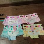 4pcs/Lot Children Girls Cat Underwear Kids Fashion Character Boxer Brief Infant Baby Girl Panties ropa interior ninos photo review